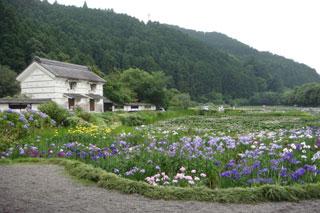 2008-07-02-000.jpg