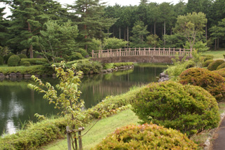 2008-08-kisei000-1.jpg